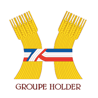 logo groupe holder ideria